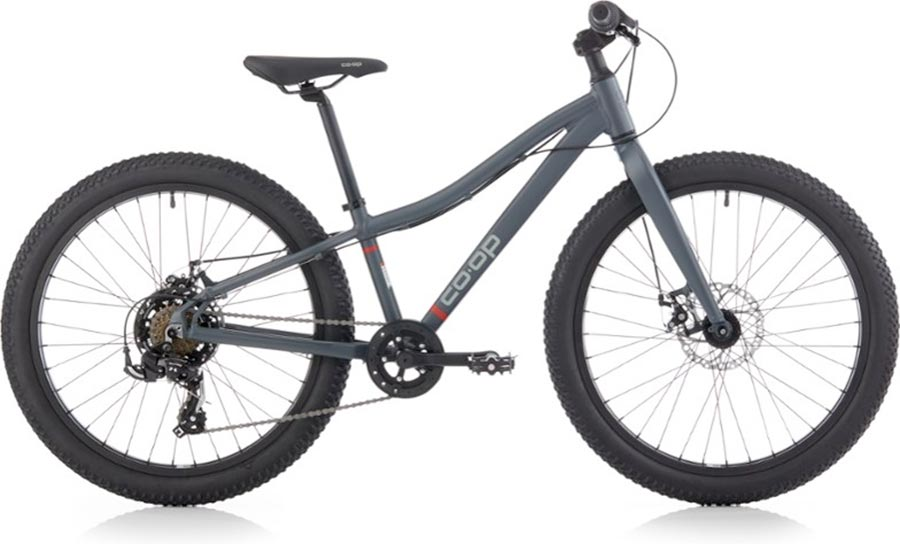 REI Co-Op 24-inch wheel mountain bike for kids