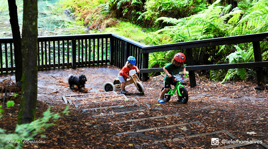 Young riders earning their turns at Kidsworx Rotorua