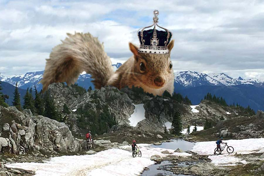 Lord Of The Squirrels - Whistler family mountain bike ride