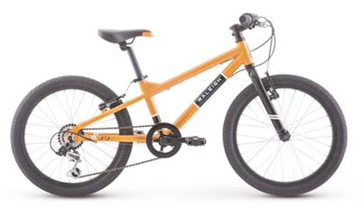 best mid range 20 inch kids mountain bike raleigh