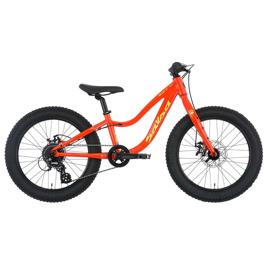 Salsa Timberjack 20 kids mountain bike