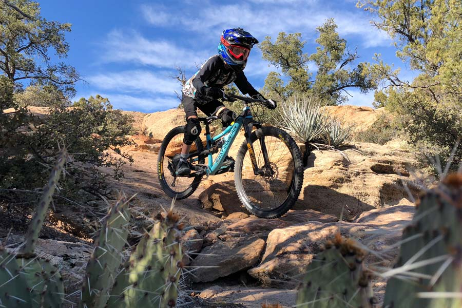 Rocky Mountain Reaper review - in the desert
