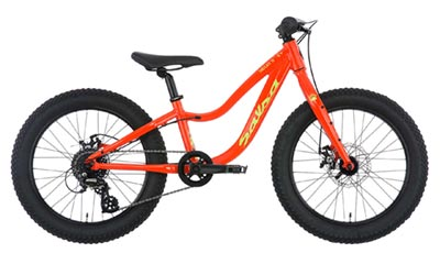 Mountain bikes for kids 5-8 years old