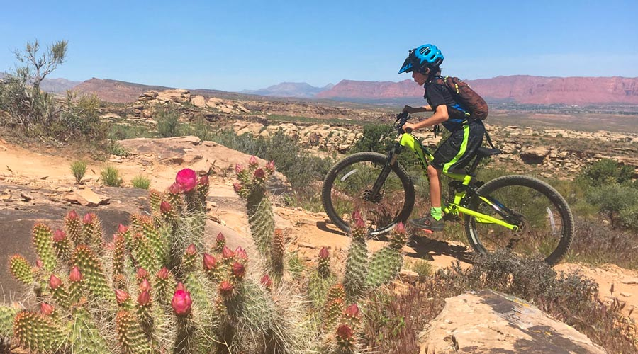 Climbing the Zen Trail in St. George, Utah