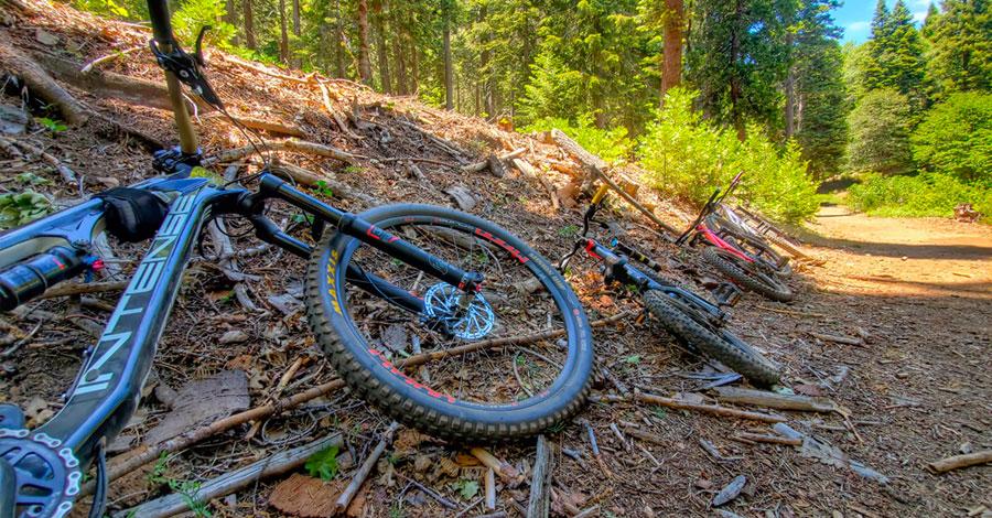 Some of the Rheuben family's bikes