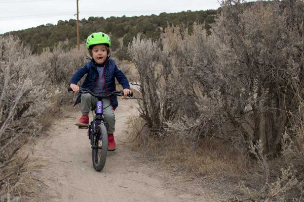 Prevelo Bike Review